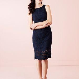 Cleo Petite Lace Shift Dress